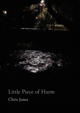 Little Piece of Harm cover (final)